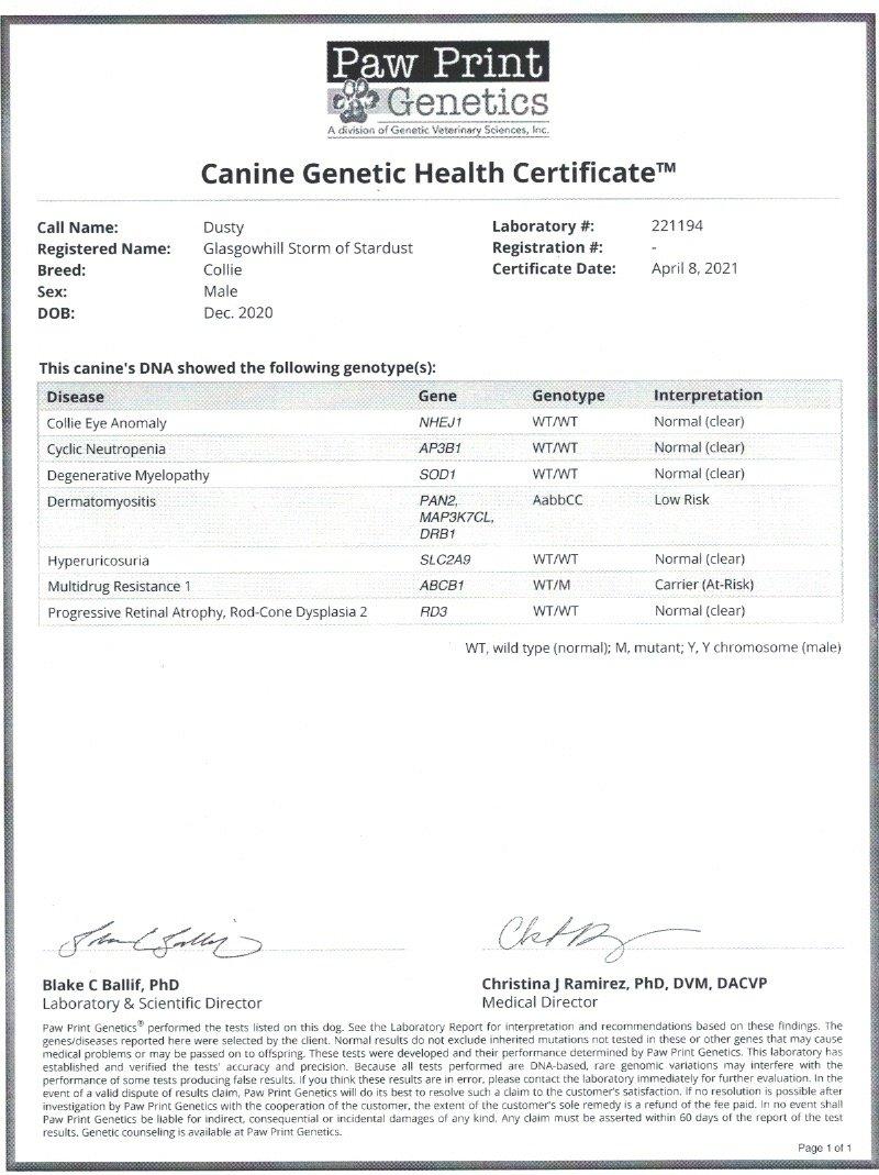 Dusty Disease Certificate